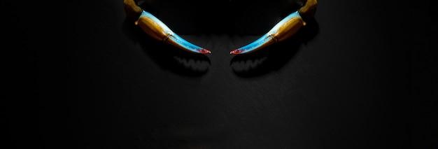 Niebieskie pazury kraba na ciemnym tle, obraz panoramiczny, puste menu z owocami morza