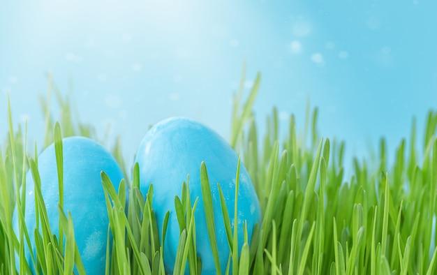 Niebieskie pisanki w zielonej trawie na tle błękitnego nieba