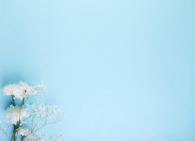 Niebieskie tło z białymi kwiatami. tekstura
