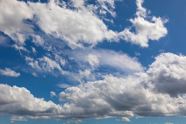 Niebo i chmury wieczorem w lecie. zachodzące słońce podkreśla chmury poniżej