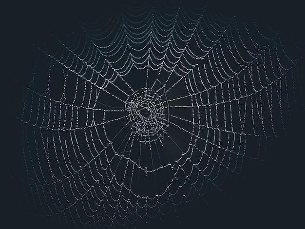 Niedokończona sieć z kroplami rosy na ciemnym tle halloween