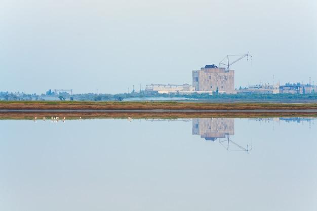Niedokończony blok energetyczny dezercji elektrowni atomowej i stada mew (w pobliżu miasta scholkino, krym, ukraina).