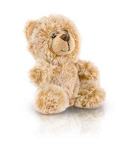 Niedźwiedź zabawka na białym tle na białym tle