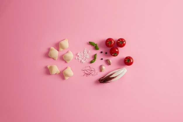 Niegotowane muszle makaronu, sól morska, dojrzałe pomidory, zielone liście bazylii, suszone nitki papryczki chili jako dodatek, czerwona cykoria sałatkowa do przygotowania pysznego, apetycznego dania z makaronu. koncepcja wegetariańska