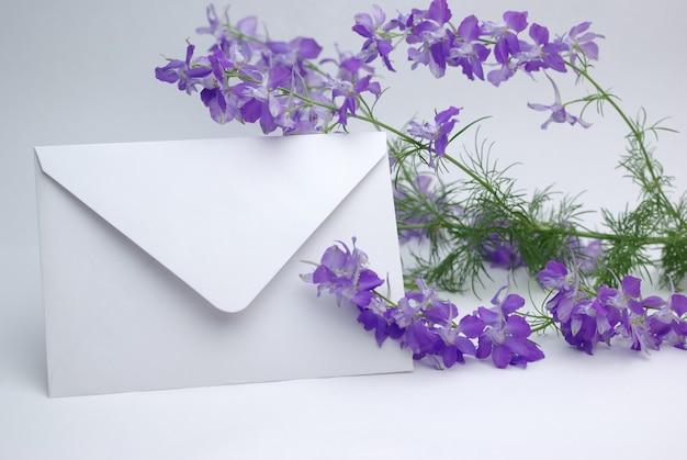 Niepodpisana koperta na tle fioletowych kwiatów consolida regalis