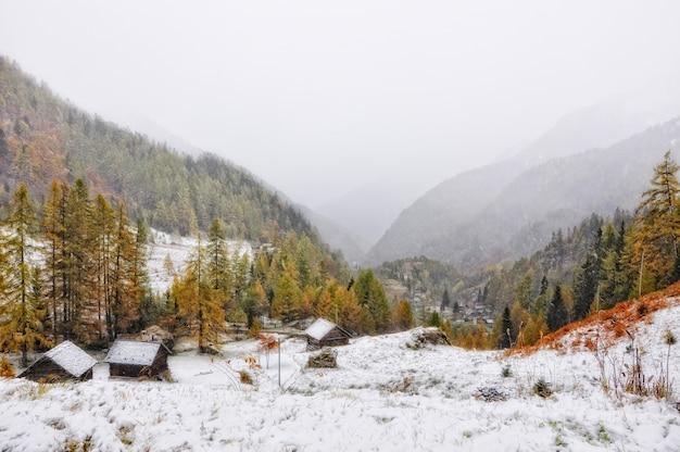 Niesamowita mglista scena zaśnieżonej góry częściowo porośniętej lasem