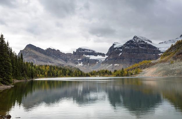 Niesamowite Górskie Krajobrazy W Parku Prowincjonalnym Mount Assiniboine, Kolumbia Brytyjska, Kanada Sezon Jesienny Premium Zdjęcia