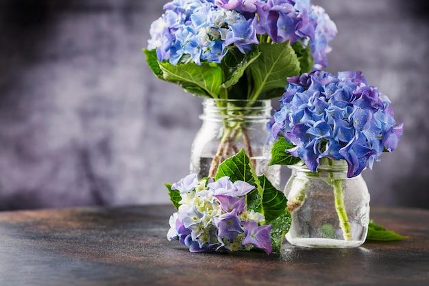 Niesamowite niebieskie kwiaty hortensji