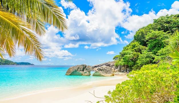 Niesamowite piaszczysta plaża