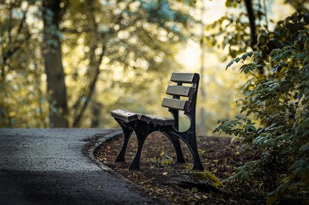 Niesamowite ujęcie drewnianej ławki w jesiennym parku