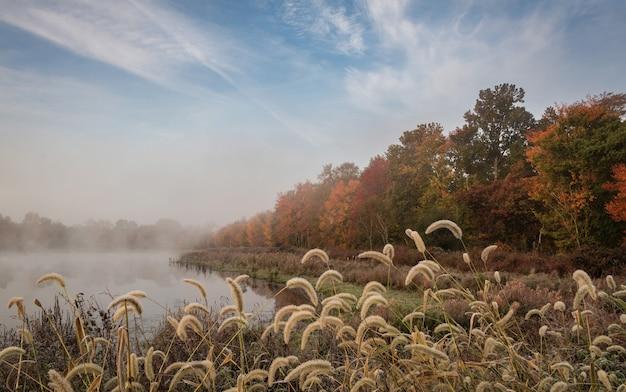 Niesamowite ujęcie jesiennego krajobrazu z jeziorem
