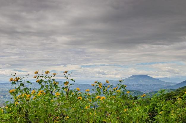 Niesamowite widoki w gwatemali