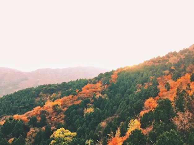 Niesamowity jesienny krajobraz z kolorowymi drzewami i górami