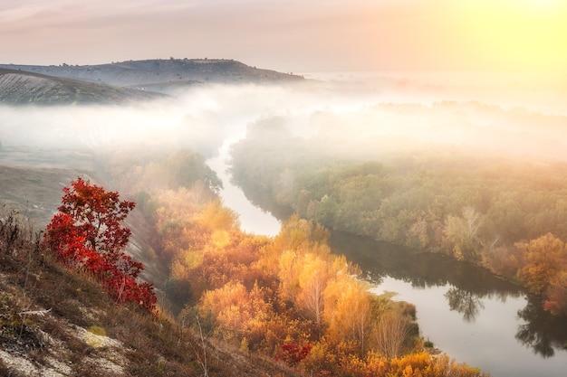 Niesamowity jesienny krajobraz z mgłą