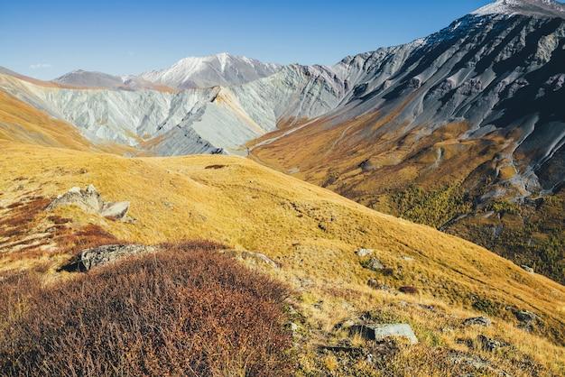 Niesamowity jesienny krajobraz z wielkimi ośnieżonymi górami i ostrymi skałami. spektakularny kolorowy widok na grzbiet górski i żółtą dolinę jesienią. wspaniała górska sceneria w pomarańczowych jesiennych barwach.
