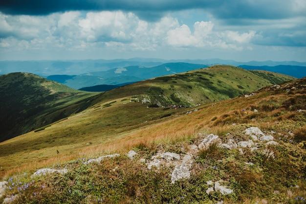 Niesamowity krajobraz z górami i lasem