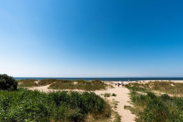 Niesamowity letni krajobraz wybrzeża bałtyku, piaszczysta ścieżka i błękitne morze