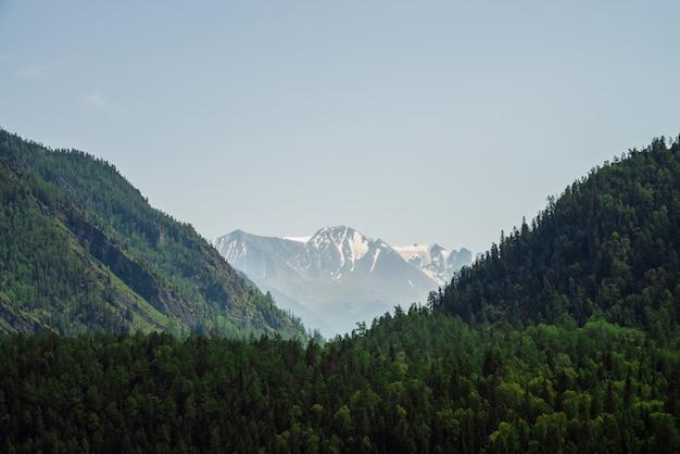 Niesamowity widok na duży lodowiec za górami leśnymi pod niebieskim niebem. bujne zielone wzgórza całkowicie pokryte lasem. żywy alpejski krajobraz w słoneczny dzień. kolorowe krajobrazy góralskie. zaśnieżona góra