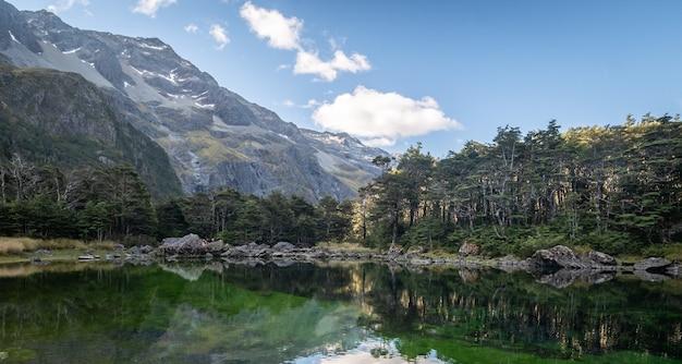 Nieskazitelne alpejskie jezioro otoczone drzewami i górami niebieskie jeziora lakenelson nowa zelandia