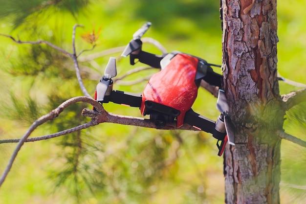 Nieudana katastrofa drona na drzewie i spadła ze złamaną nogą i podrapała się na jej pokrywie.