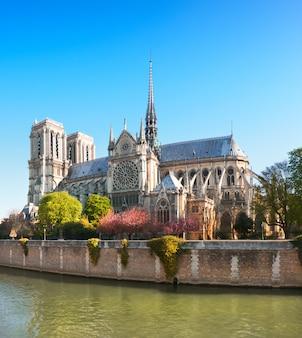 Nieuszkodzona wschodnia fasada katedry notre dame de paris na wiosnę przed pożarem, obraz panoramiczny