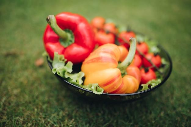 Niewiele świeżych warzyw apetyczny w płycie na zielonej trawie w słoneczny letni dzień pełny strzał. kupa soczystej sałaty pomidorowej ze słodką papryką gotowa na piknik na świeżym powietrzu pod dużym kątem