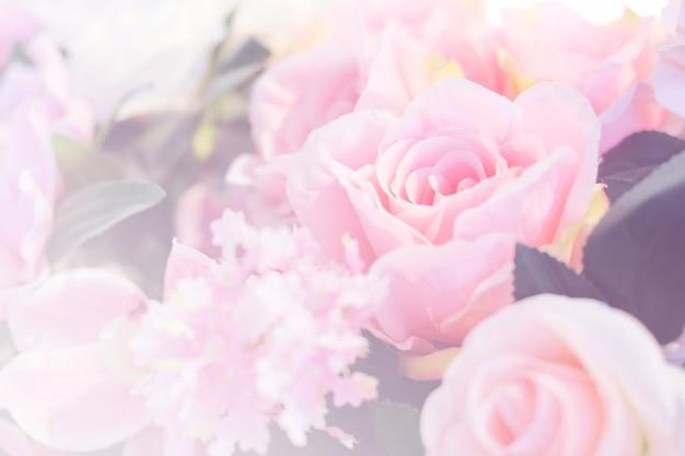 Niewyraźne kwitnących kwiatów róży.