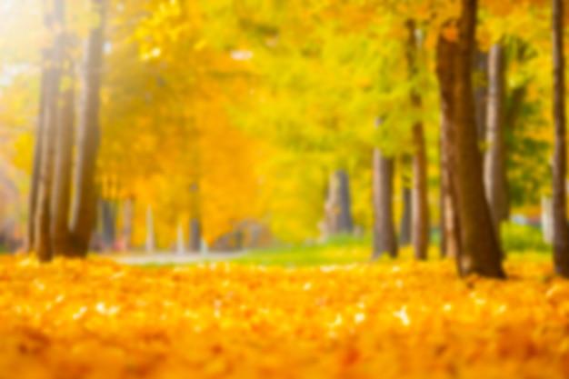 Niewyraźne park jesień krajobraz dla materiału graficznego