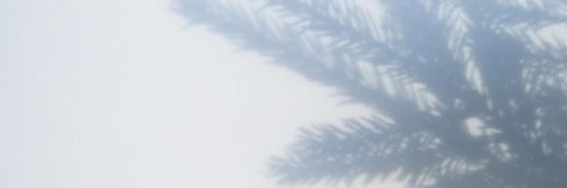 Niewyraźne zdjęcie cienia z gałęzi choinki na białym szarym tle ściany lub stołu. transparent