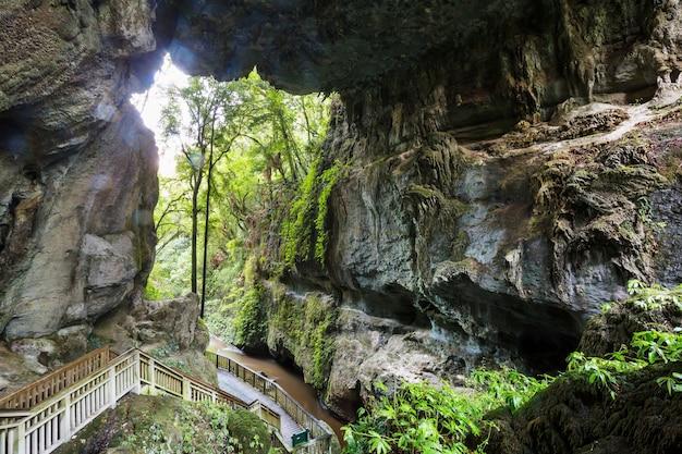Niezwykłe krajobrazy jaskiniowe w nowej zelandii