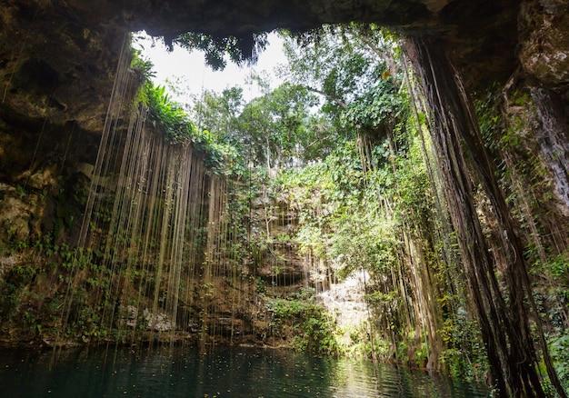 Niezwykłe naturalne krajobrazy - ik-kil cenote, meksyk