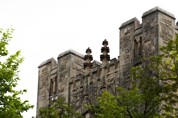 Niski kąt kamienny zamek z drzewami