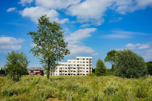 Niski kąt strzału pola z polnymi kwiatami i nowoczesny budynek pod błękitne niebo z chmurami