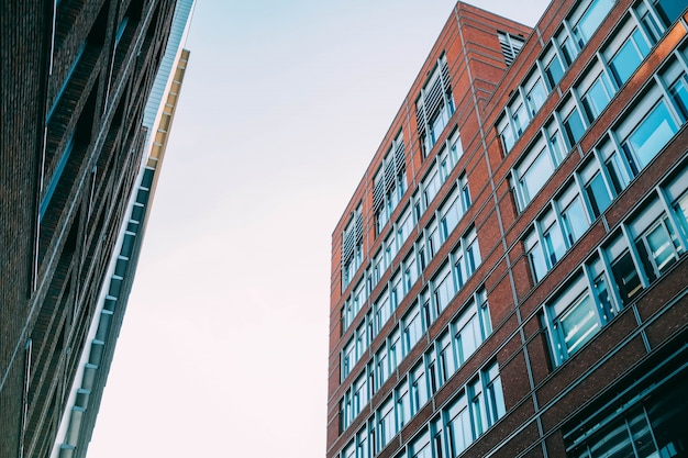 Niski kąt ujęcia betonowych budynków mieszkalnych z dużą ilością okien