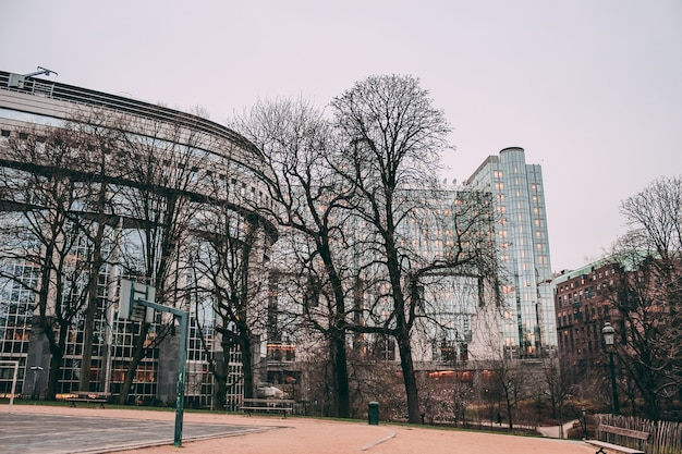 Niski kąt ujęcia parku parlamentu europejskiego w brukseli