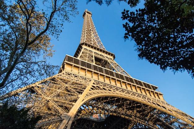 Niski kąt widzenia wieży eiffla otoczonej drzewami w świetle słonecznym w paryżu we francji