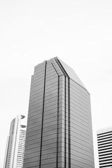 Niski kąt widzenia wysokich budynków korporacyjnych w czerni i bieli