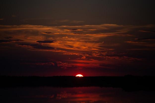Niski kluczowy zachód słońca nad jeziorem. niska linia horyzontu. burgundowe niebo. słońce chowa się za pasem drzew. jest miejsce na kopię.