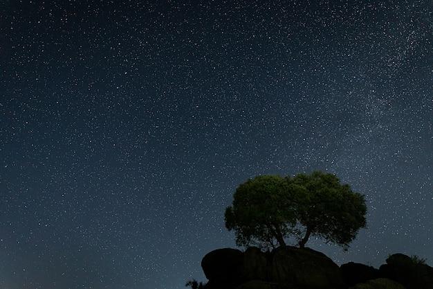 Nocna fotografia w pobliżu malpartida de caceres. extremadura. hiszpania.