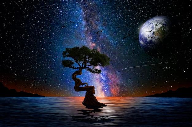 Nocne drzewo nad jeziorem i wszechświat w tle