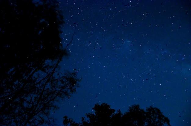 Nocne niebo z gwiazdą.