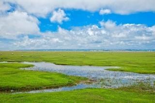 Normandy pastwisko hdr scenic