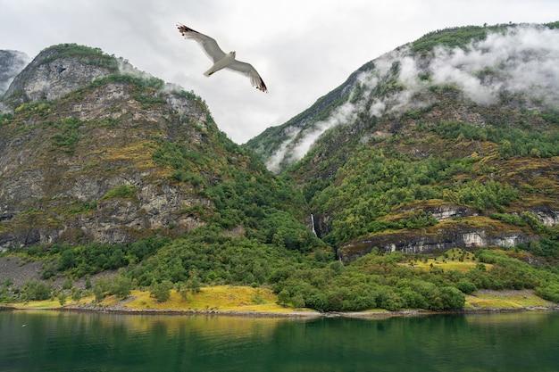 Norweski fiord widok na morze krajobraz górski sognefjord.