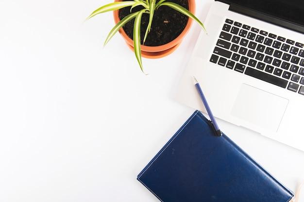 Notatnik i pióro blisko laptopu i rośliny