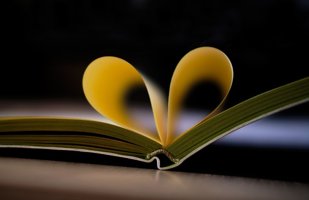 Notatnik uwielbiam serce z kartek książki