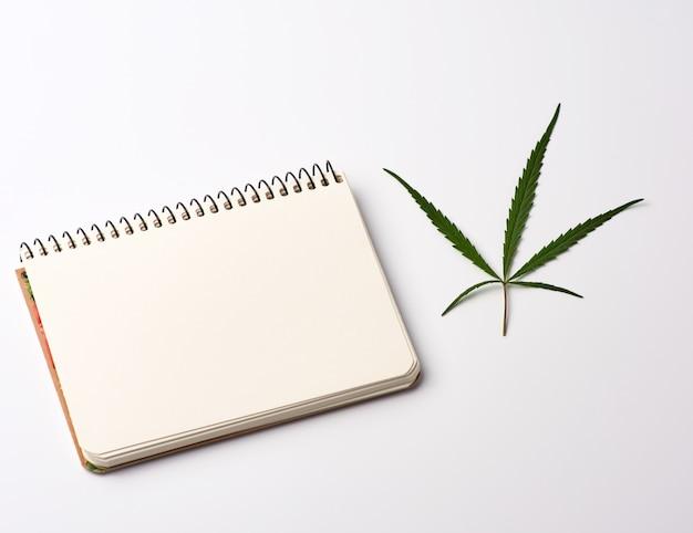 Notatnik z pustymi białymi kartkami i zielonym liściem konopi