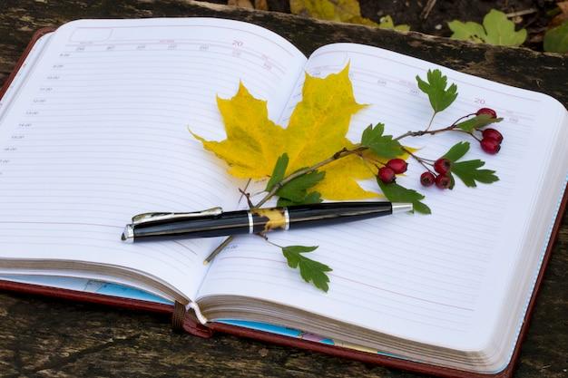 Notatnik z żółtymi liśćmi i czerwonymi jagodami
