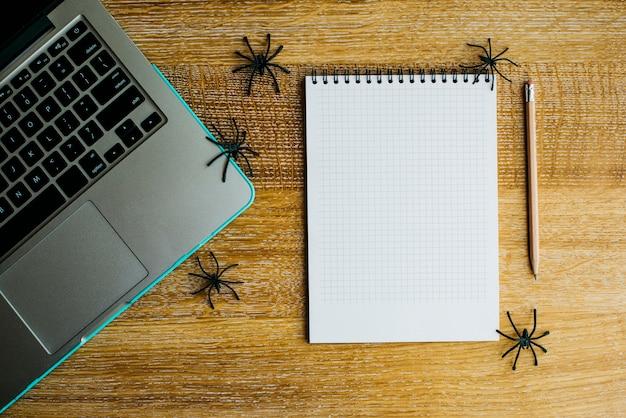 Notebook i pająki w pobliżu laptopa