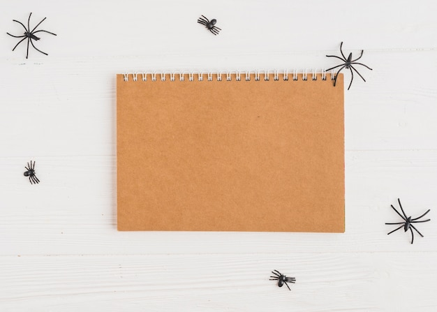 Notebook w pobliżu dekorowanie pająków