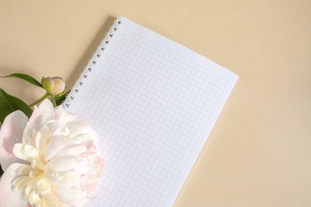 Notes w klatce na wiosnę i duży beżowy pączek piwonii na beżowym tle